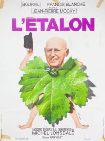 Vintage Movie poster - L'etalon 1970